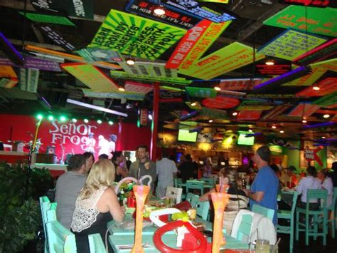We were amazed by the ceiling   Picture of Senor Frog's, Orlando   TripAdvisor