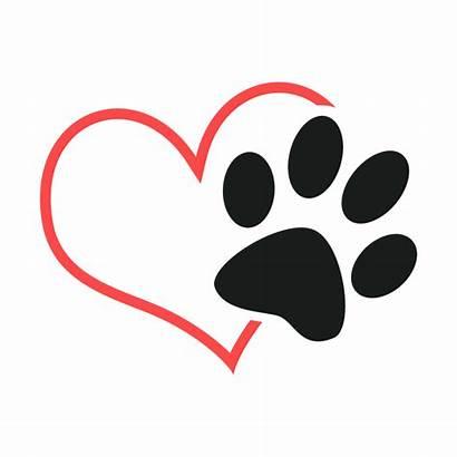 Rescue Animal Clipart Dog Transparent Pet Welfare
