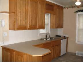 L-shaped Kitchen with Island Ideas