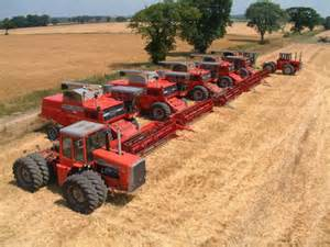 Custom Combine Harvesting