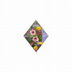 Tapis De Fleurs : tapis de fleurs m di val plantes et jardins ~ Melissatoandfro.com Idées de Décoration