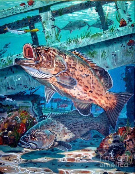 grouper gag chen carey fish painting fishing drawings tattoo drawing paintings fineartamerica underwater sea fly beginners tattoos which 21st uploaded