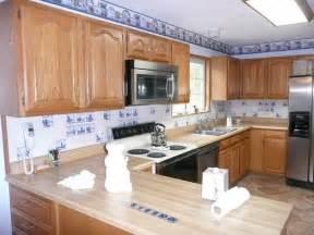 Murals For Kitchen Backsplash Delft Blue Kitchen Back Splash Blue And White Ceramic Tile Traditional Kitchen Sacramento