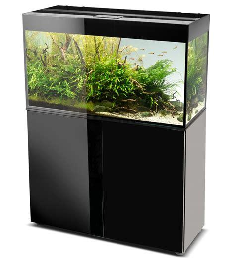 vente d aquarium en ligne 28 images vente de poissons d aquarium en ligne eleveur vente en