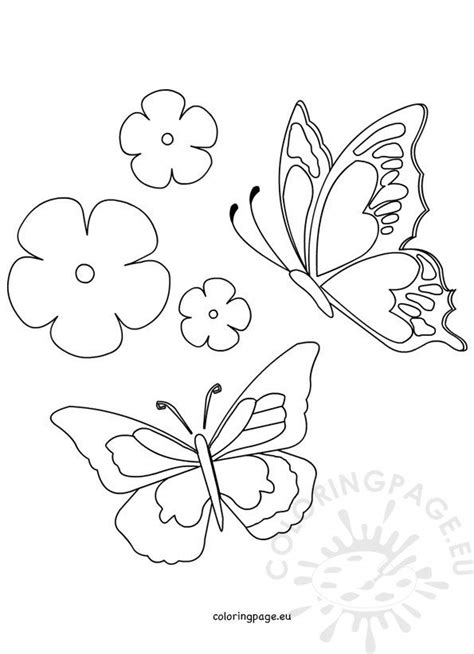 spring butterfly  flower coloring page