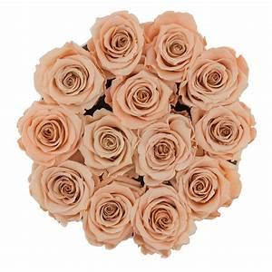 Ewige Rosen Box : teefarbene ewige rosen in schwarzer rundbox ewige rosen rosen produkte online ~ Eleganceandgraceweddings.com Haus und Dekorationen