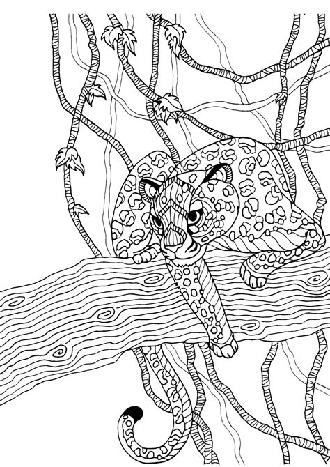Cheetah Kleurplaat by Cheetah Colouring Page Colouring In Sheets