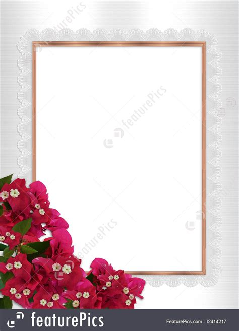 illustration  floral border bougainvillea gold frame