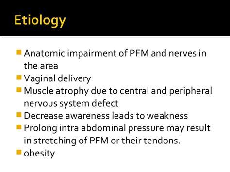 pelvic floor tension myalgia pelvic floor