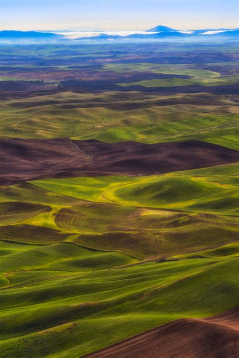 The Palouse Hills of Eastern Washington | William Horton ...