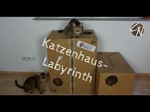 Katzenhaus Selber Bauen : katzenhaus aus pappe basteln youtube ~ A.2002-acura-tl-radio.info Haus und Dekorationen