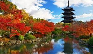 Fact Sheet Grand Prix Kyoto 2015
