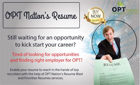 best database of opt resumes in usa opt resume database