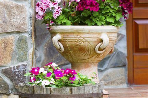 vasi grandi per piante vasi in plastica per piante grandi piante grasse in vaso