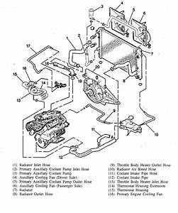 Cadillac Deville Water Pump Location Cars Pictures