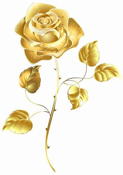 Gold Flower Clipart Clip Rose Yandex Svg