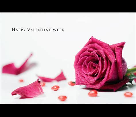 happy valentine week explore highest position