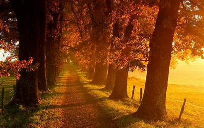 Fall Scenery Wallpapers Tablet