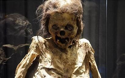 Momias Guanajuato Museo Leyendas Terror Cortas Historias