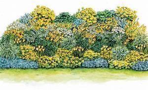 Blumenbeete Zum Nachpflanzen : sonnengelbes beet zum nachpflanzen gartengestaltung und ideen garten pflanzen und garten ideen ~ Yasmunasinghe.com Haus und Dekorationen