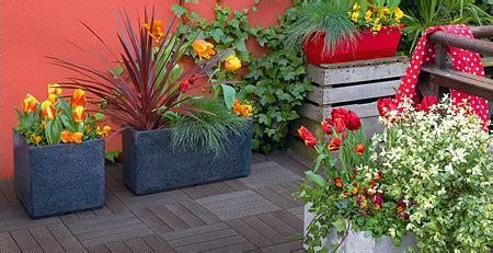 plantes exterieur toutes saisons plantes exterieur toutes saisons 28 images mon terrain est humide quelles plantes choisir