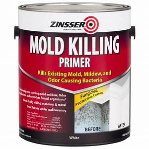 Zinsser 1 gal mold killing primer case of 2 276049 for Antifungal bathroom paint
