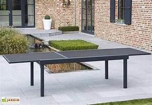 Table De Jardin Extensible : salon de jardin modulo table extensible 12 fauteuils 4 coloris wilsa ~ Teatrodelosmanantiales.com Idées de Décoration