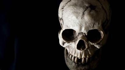 Skull Wallpapers Background Skulls Cool Skeleton Awesome