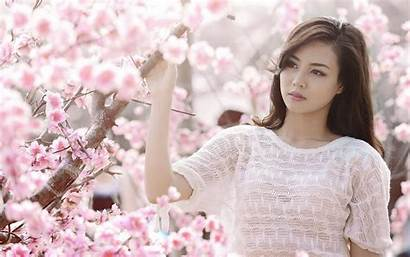 Cherry Asian Pink Flowers Clothes Pc Tablet