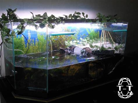 2 232 me regroupement des photos de vos aquariums