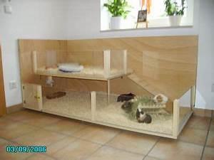 Meerschweinchen Gehege Ikea : meerschweinchen landshut haltung und pflege landshuter moppelbande ~ Orissabook.com Haus und Dekorationen