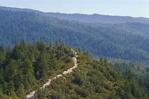 Big Basin Redwoods State Park