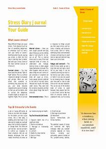 Stress Diary Guide 2  Stress Causes
