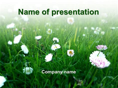 summer coming powerpoint template