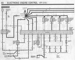 Electrical Mess - No Power To Coil Or Eec Relay