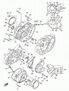 Chinese 49cc Engine Diagram  U2022 Downloaddescargar Com