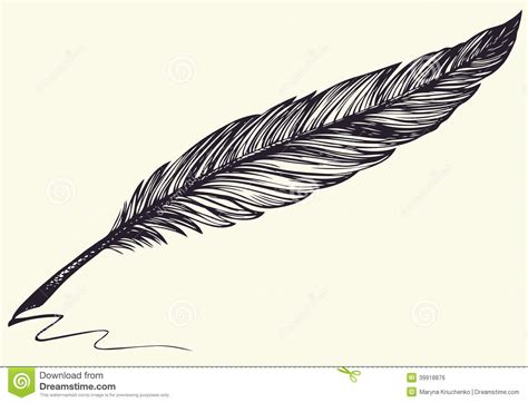 plume d oiseau dessin dessin de dessin 224 lev 233 e de vecteur de plume d oiseau