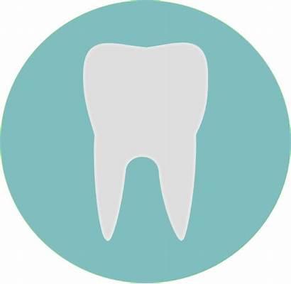 Oral Sector Care Dental Increase