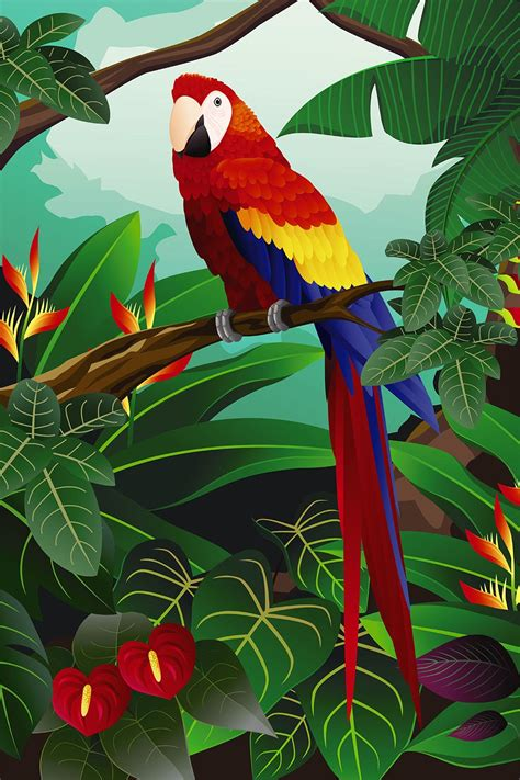 femme de chambre lyon amazon poster perroquet