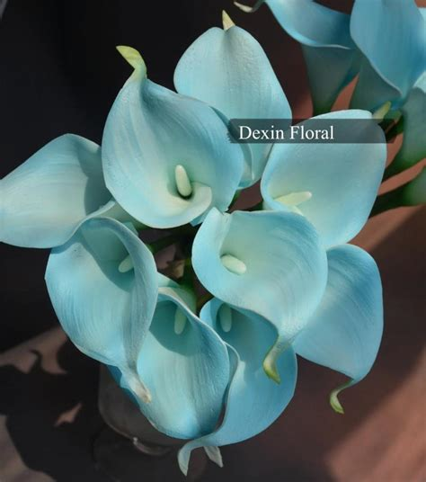blue flower touch l 9pcs real touch light aqua blue calla lily stems turquoise
