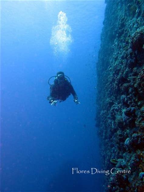 flores diving centre labuan bajo indonesia top tips