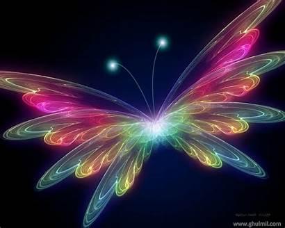 Butterfly Butterflies Desktop Wallpapers Web Animated Background