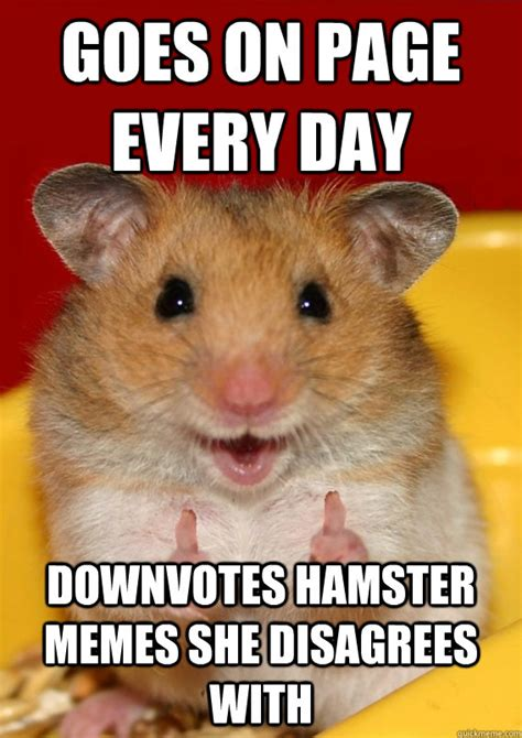 Hamster Memes - goes on page every day downvotes hamster memes she disagrees with rationalization hamster