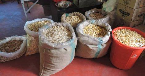 ചക്കയുണ്ടോ, വാങ്ങാൻ തയ്യാർ  Chakka Brand Jackfruit Products