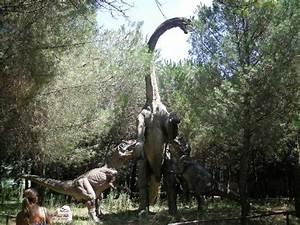 Ispezione Alla Gola    - Picture Of La Citta Dei Dinosauri  San Lorenzello