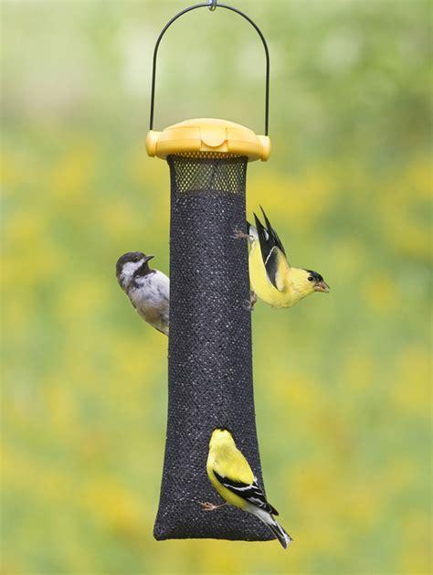 sock bird feeder unique bird feeder