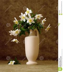 White Flowers In Vase Stock Photography - Image: 2400962