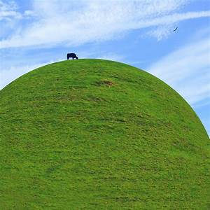 Cow Eating On Round Top Hill Photograph by Mike McGlothlen