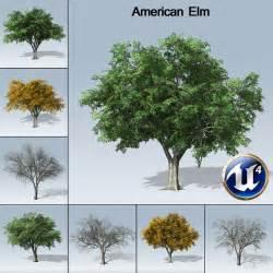 discount flowers american elm ue4 speedtree