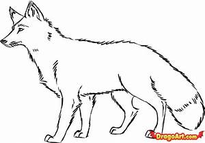 How to Draw a Red Fox, Step by Step, forest animals